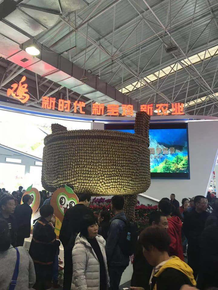 Агро выставка в Сиань